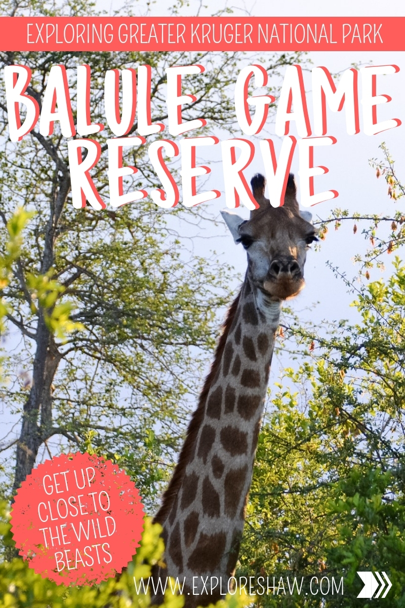 BALULE GAME RESERVE