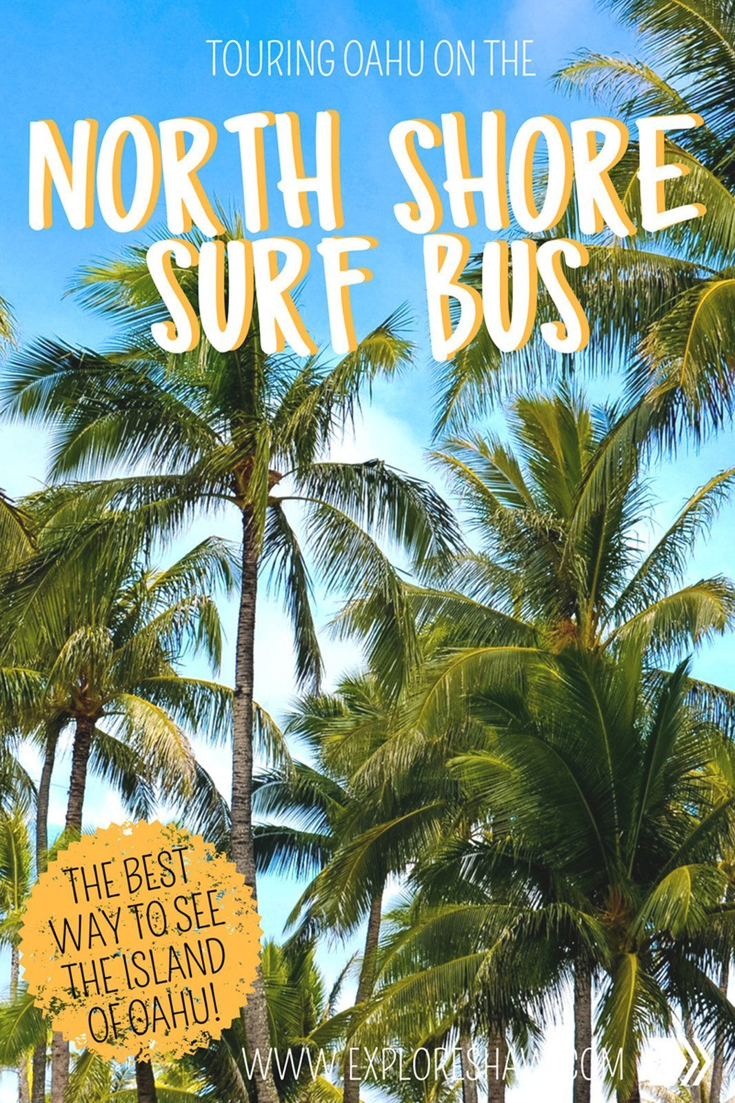 THE NORTH SHORE SURF BUS