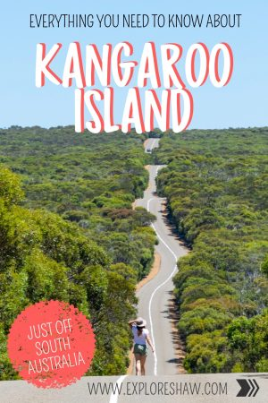 EVERYTHING YOU NEED TO KNOW ABOUT KANGAROO ISLAND
