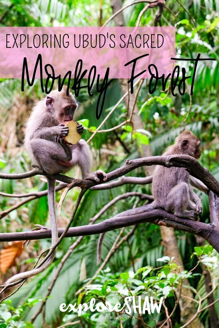 EXPLORING UBUD'S SACRED MONKEY FOREST