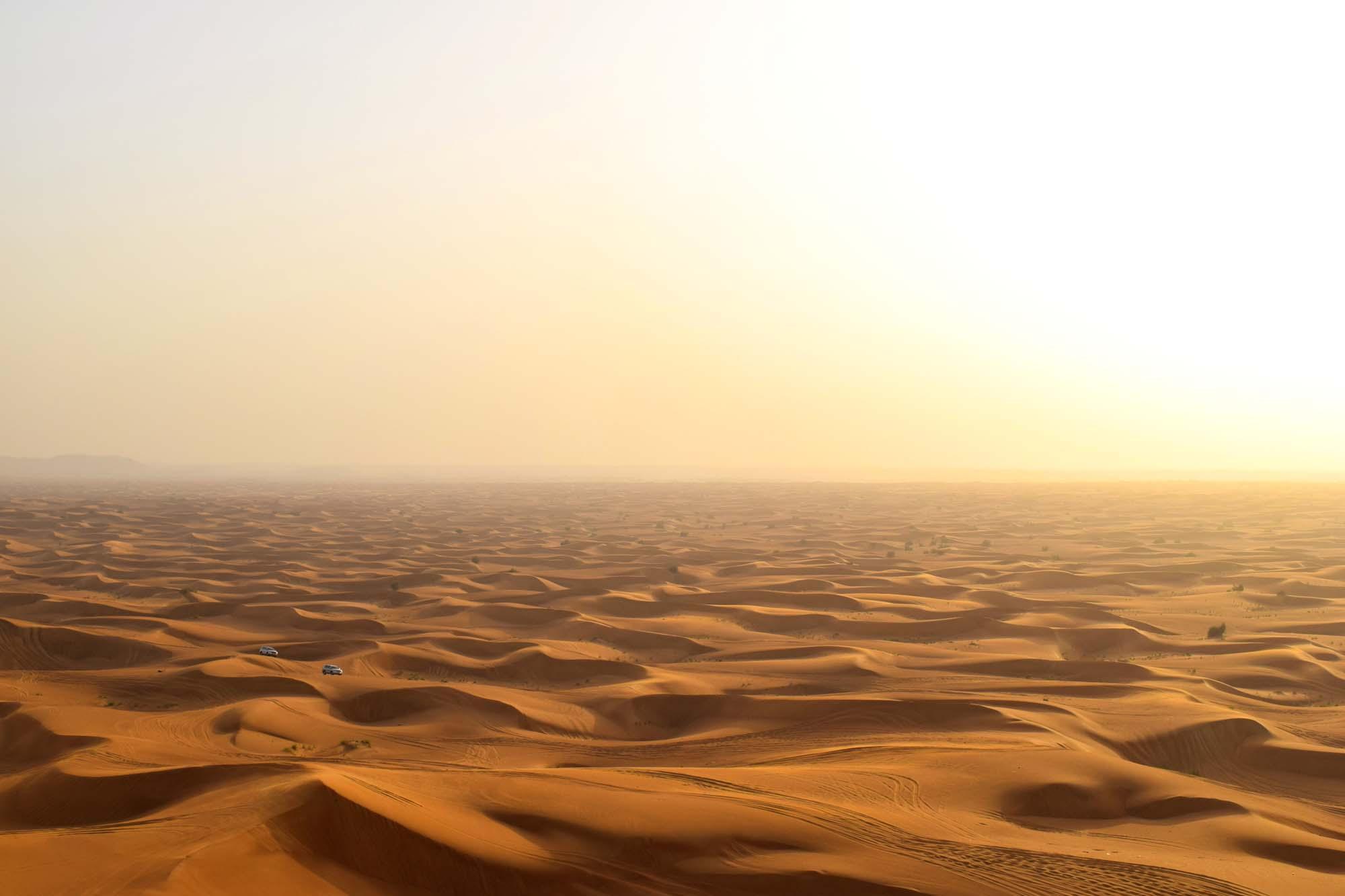 dune safari in the arabian desert