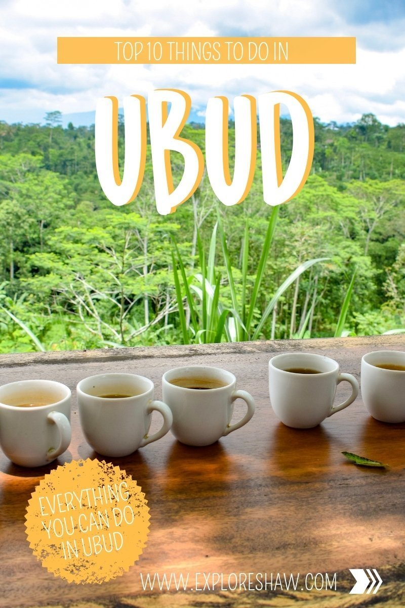 TOP THINGS TO DO IN UBUD