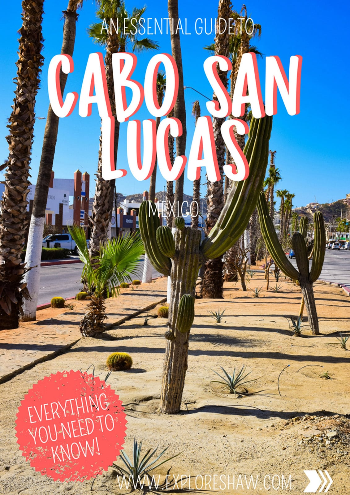 AN ESSENTIAL GUIDE TO CABO SAN LUCAS