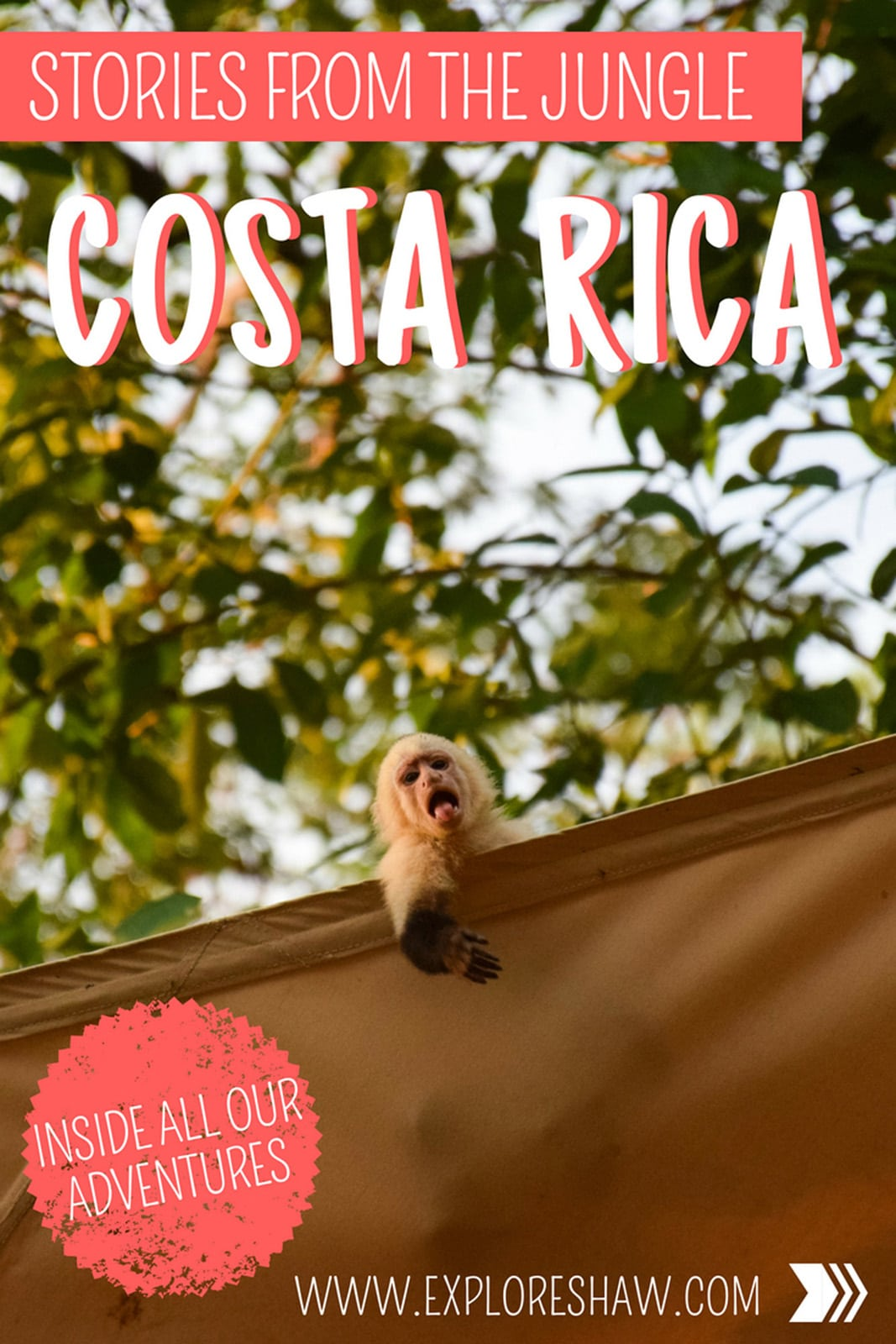 STORIES FROM THE COSTA RICAN JUNGLE