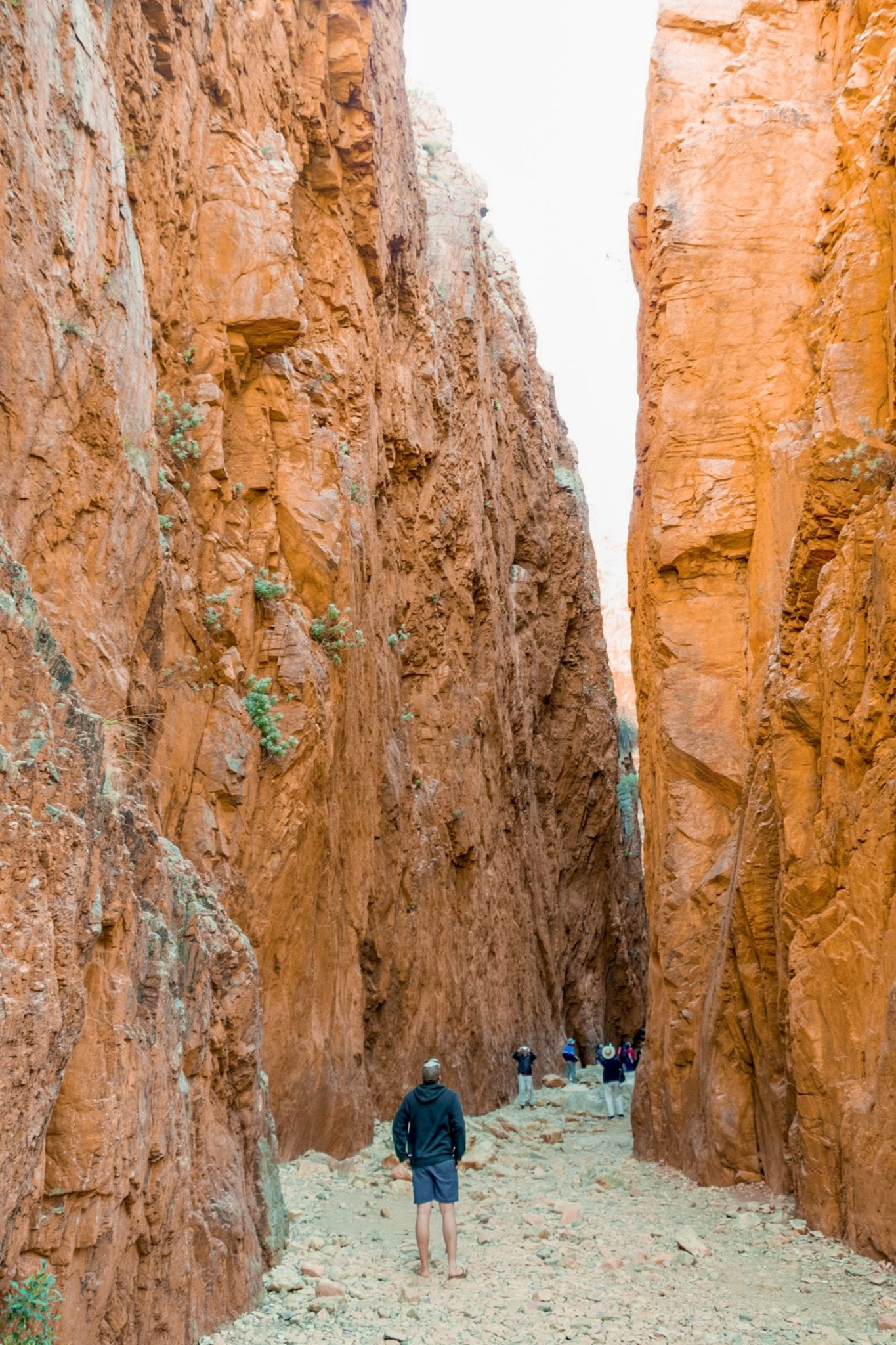 standely chasm alice springs