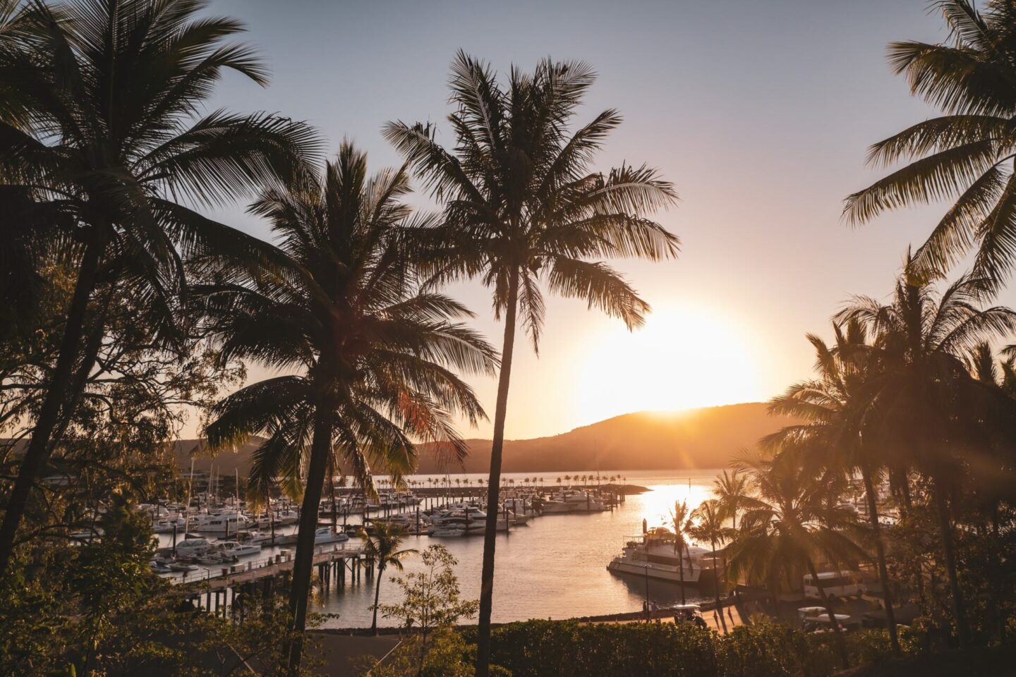 Best Things To Do On Hamilton Island