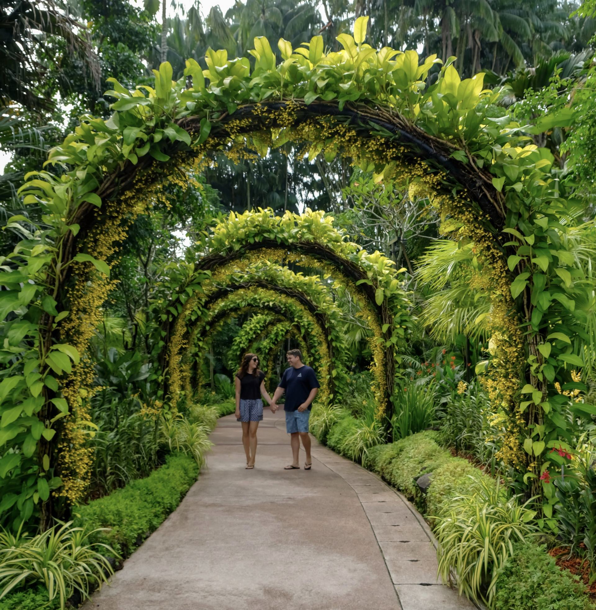 singapore national orchid garden