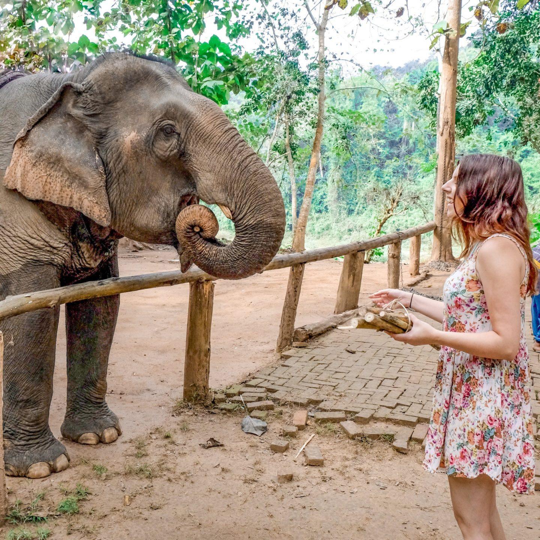 10 Things You Must Do In Luang Prabang