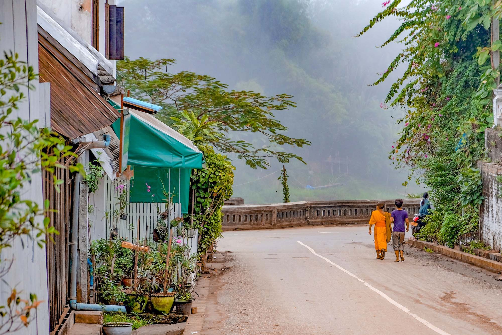 young monks walking the streets of luang prabang