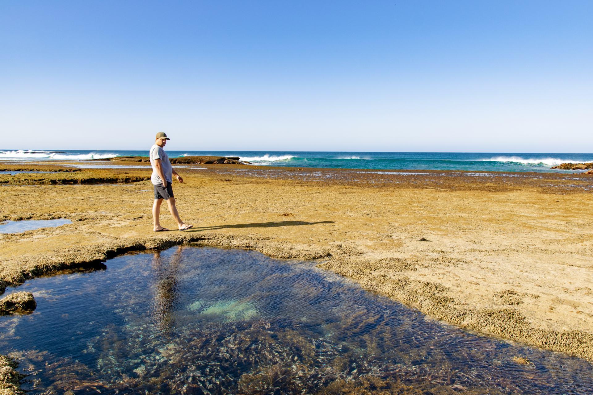 rock pools at sorrento back beach