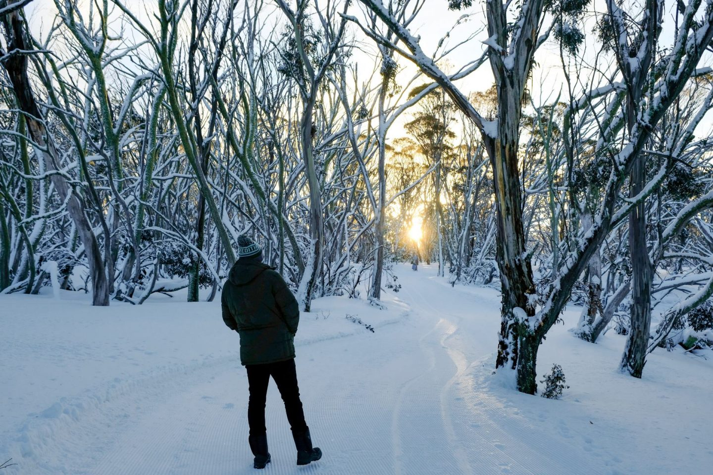 What To Do In Melbourne This Winter