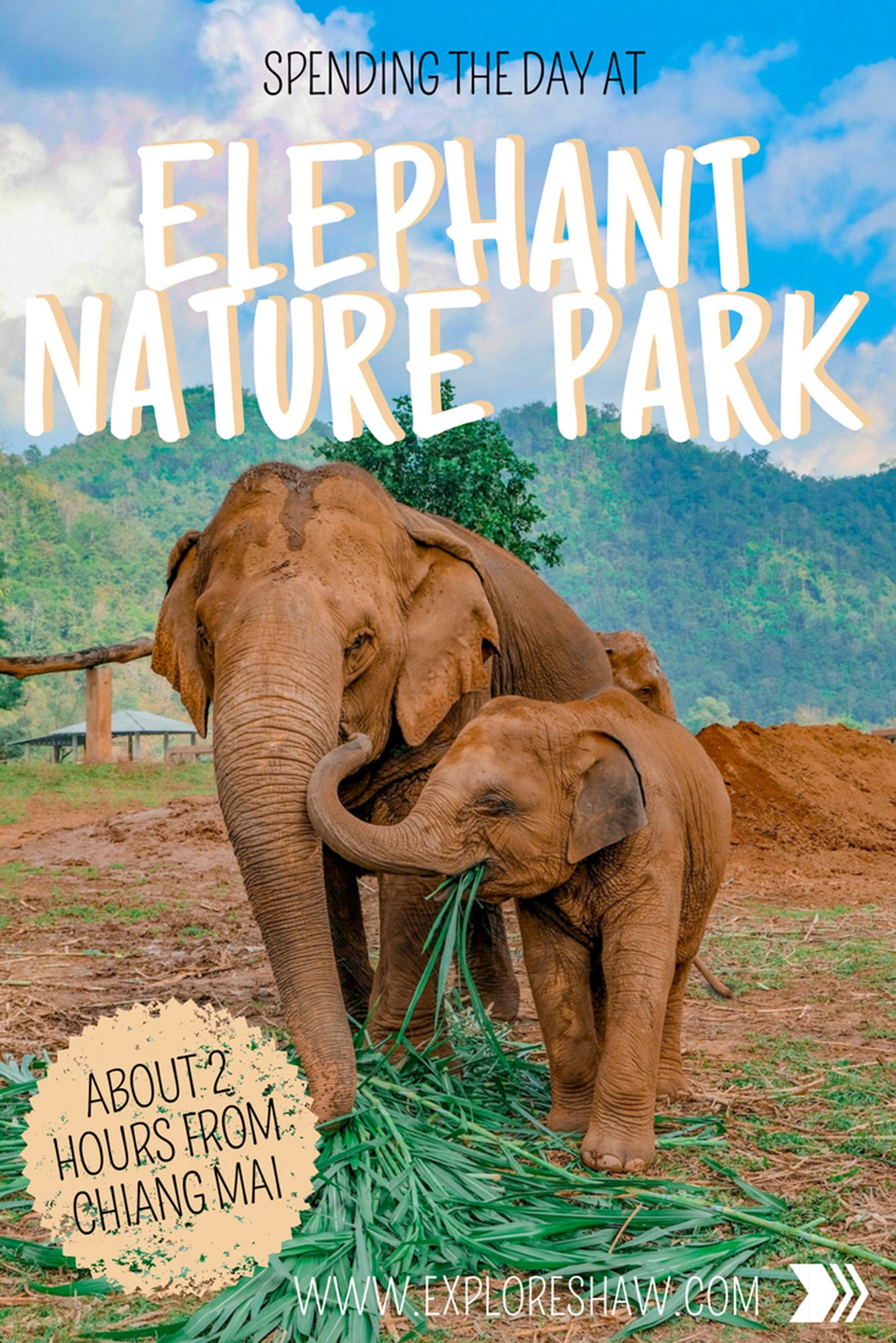 SPENDING THE DAY AT ELEPHANT NATURE PARK CHIANG MAI