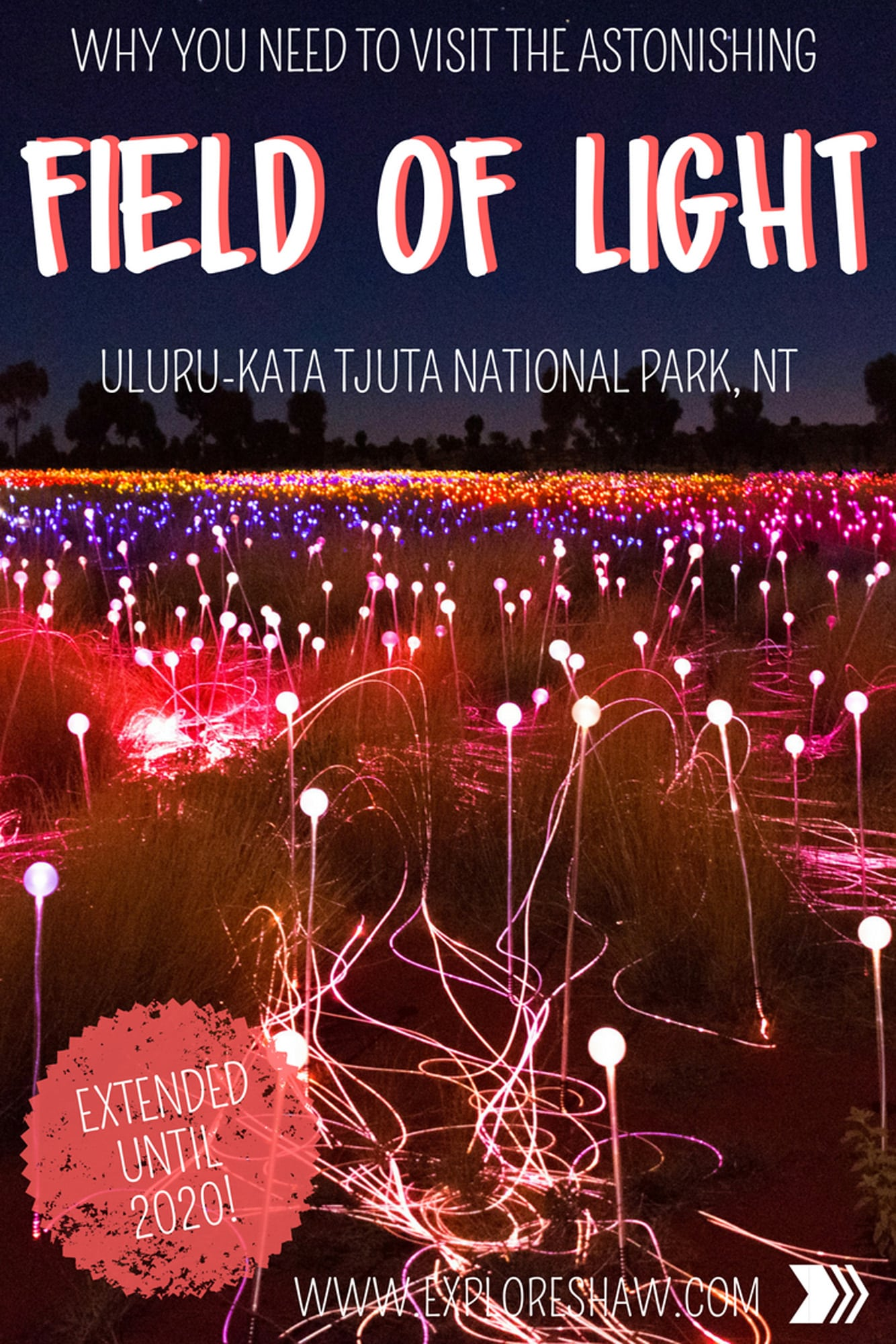 WHY YOU NEED TO VISIT THE FIELD OF LIGHT AT ULURU