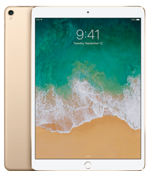 Apple iPad Pro Gold (256GB)