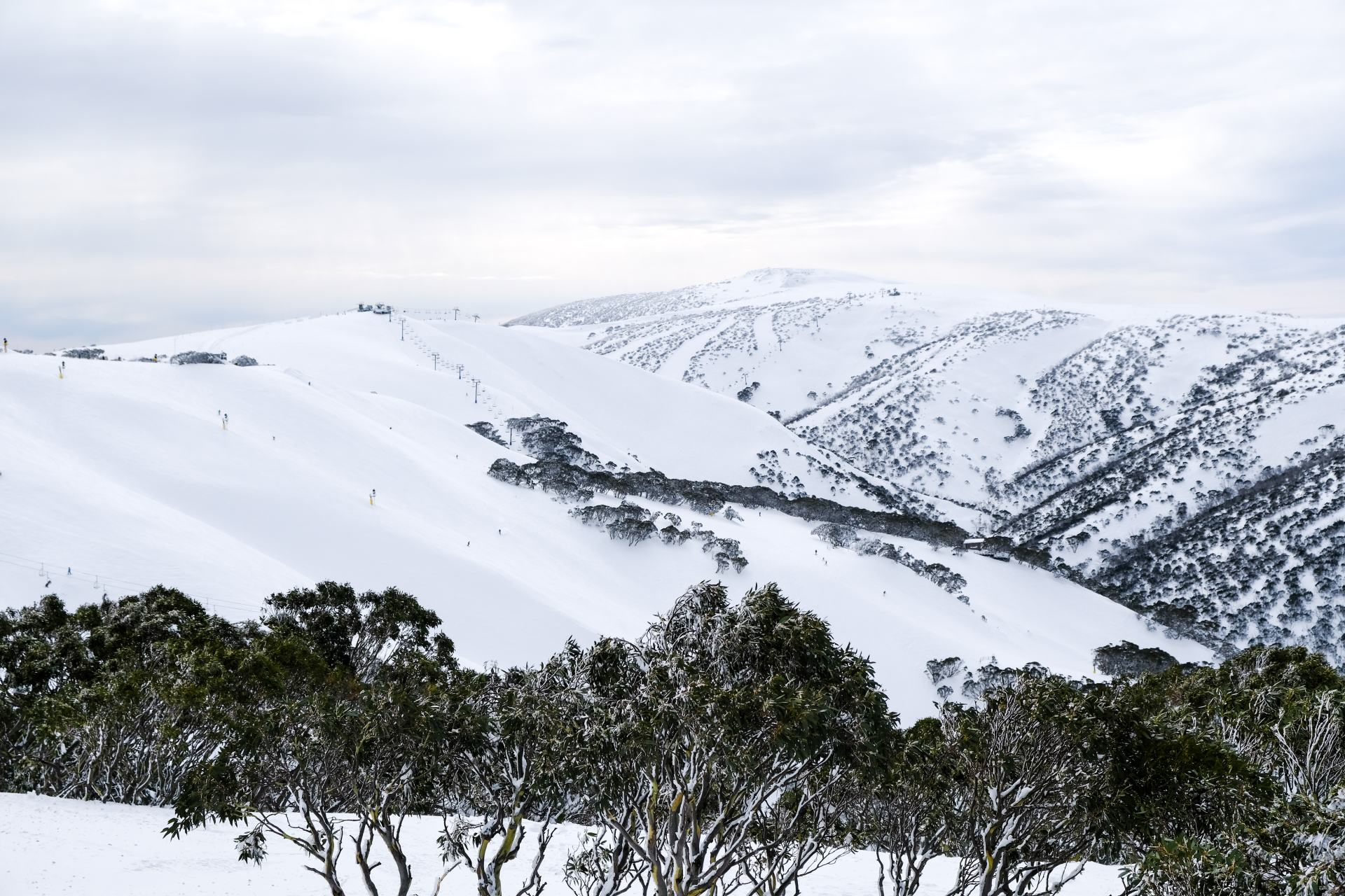 mountains at mount hotham