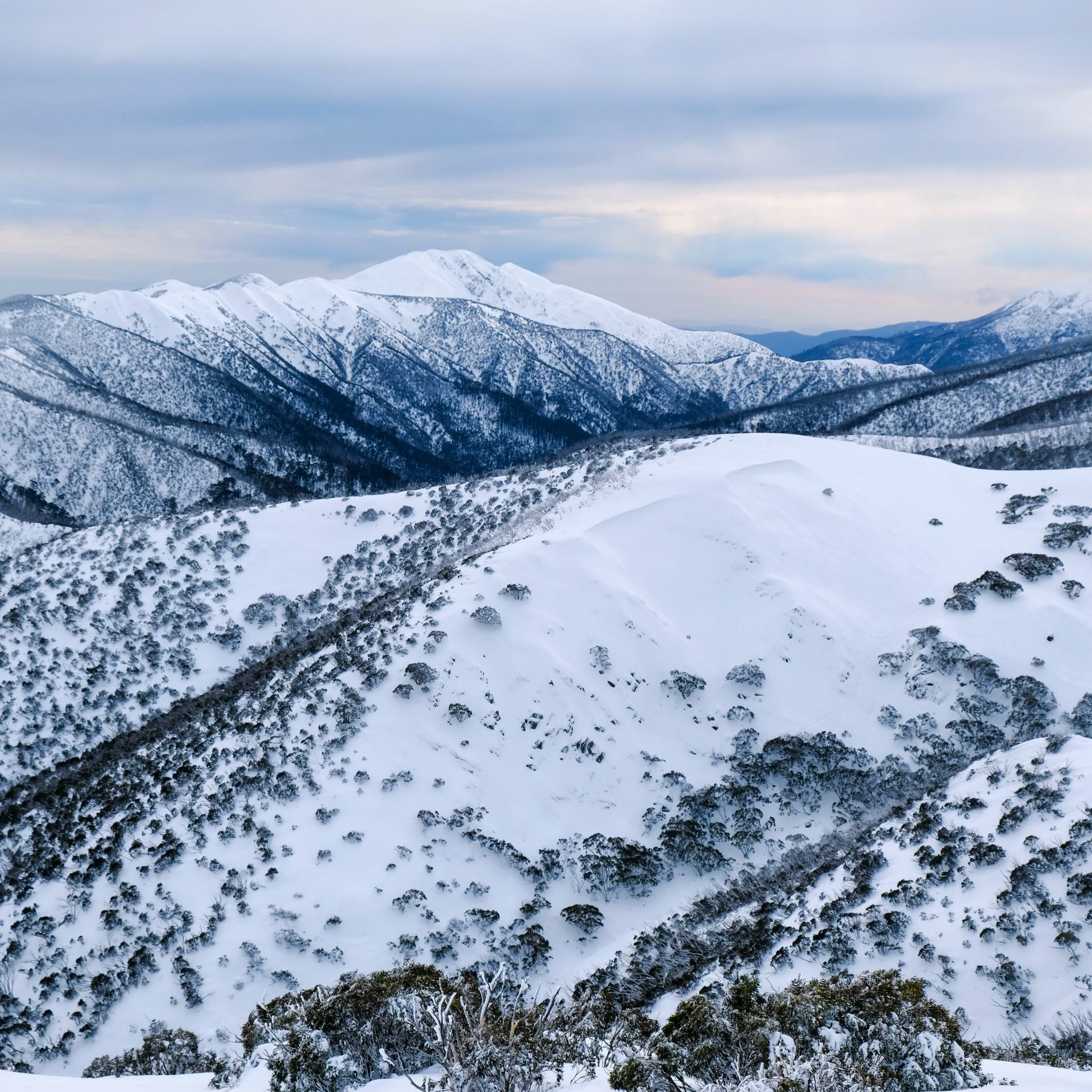 mountains at hotham