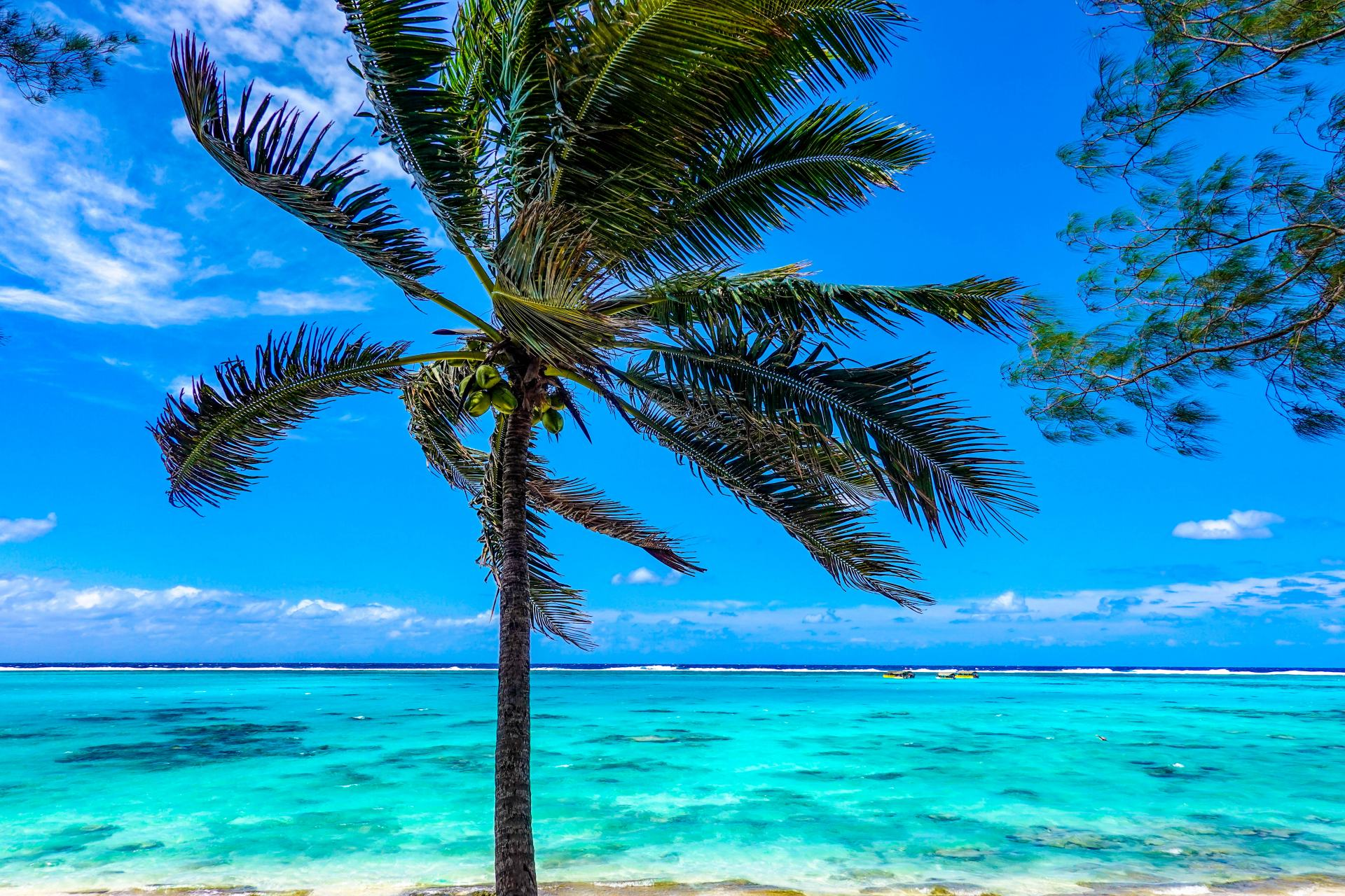 beaches on the cook islands