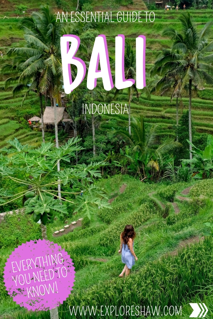 AN ESSENTIAL GUIDE TO BALI