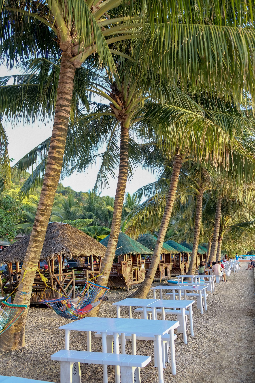 cebu island beach