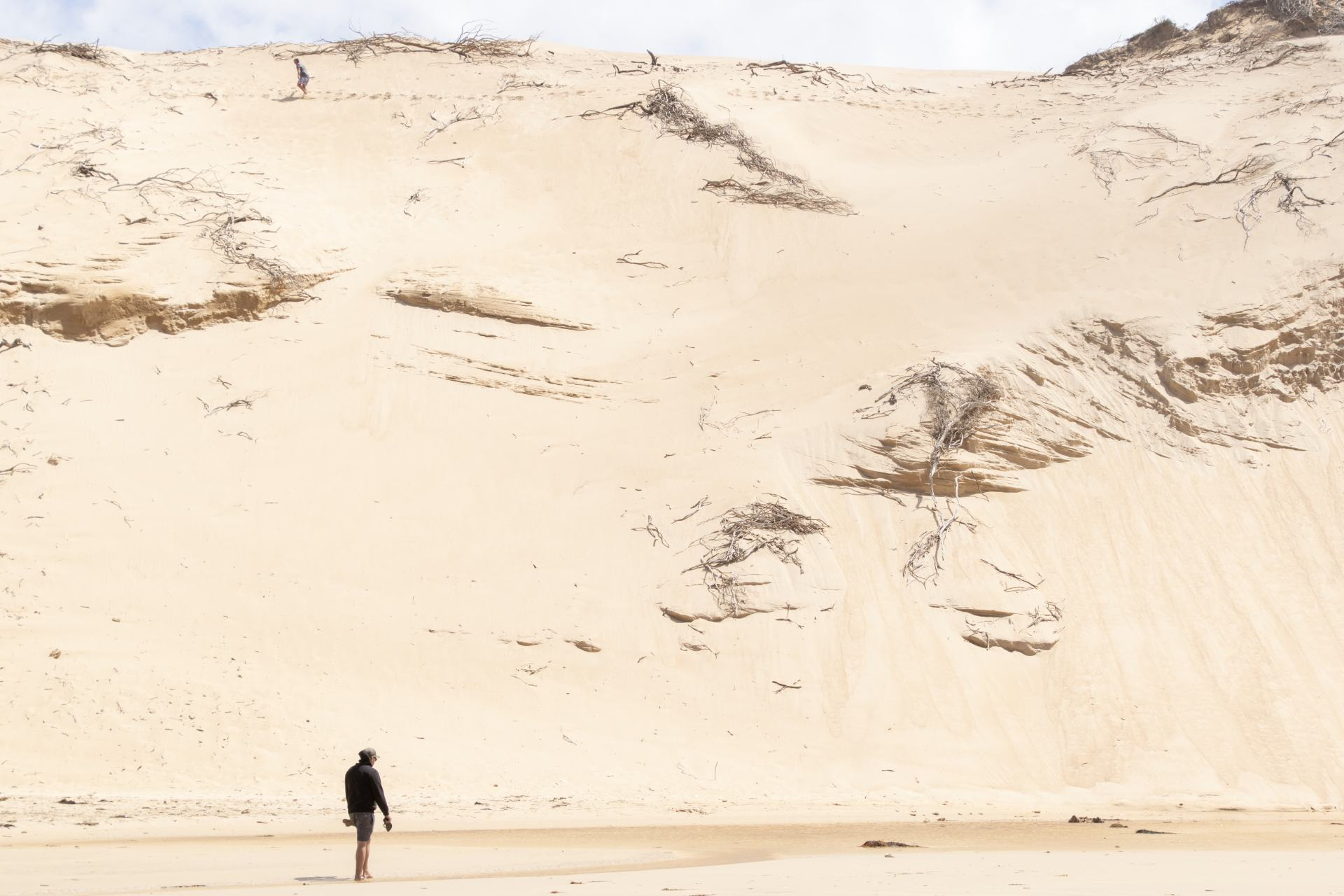 sand dunes at wilsons prom
