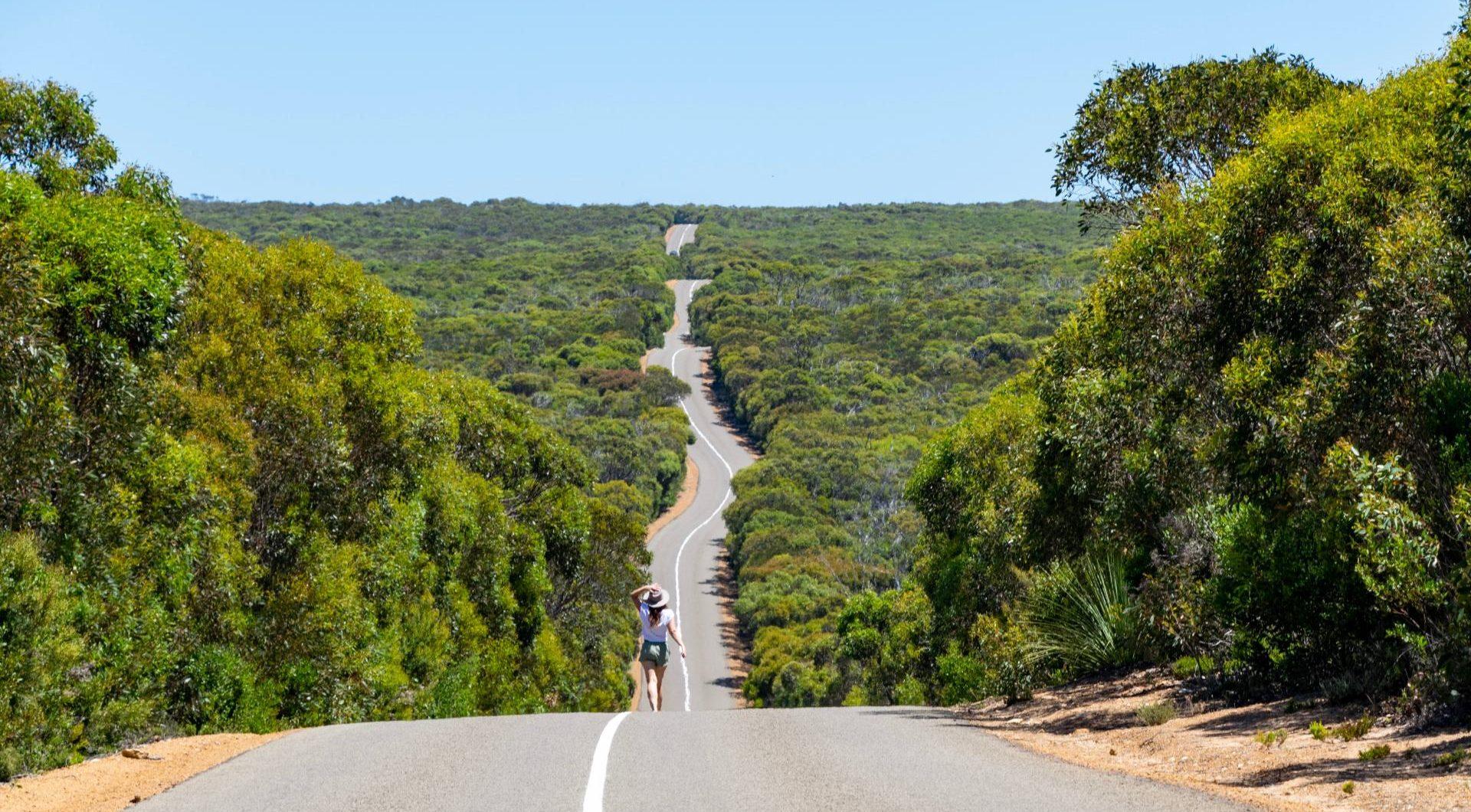 flinders chase national park kangaroo island