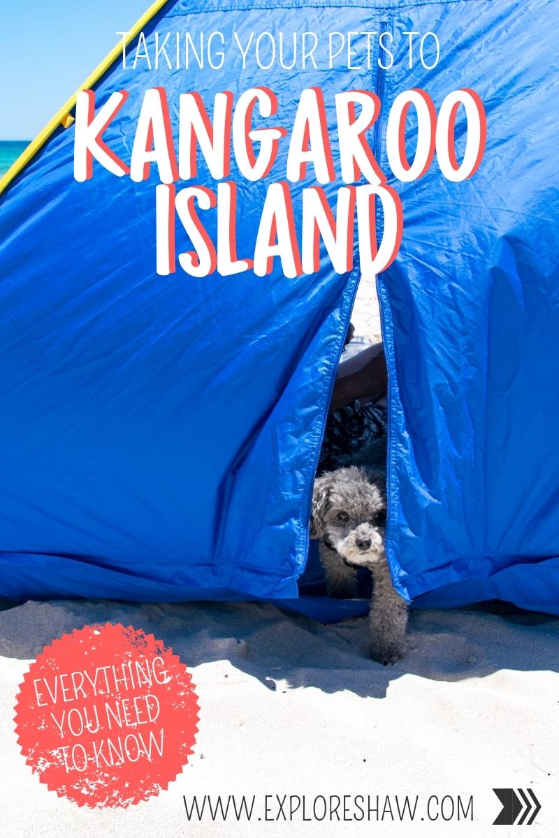 TAKING YOUR PETS TO KANGAROO ISLAND