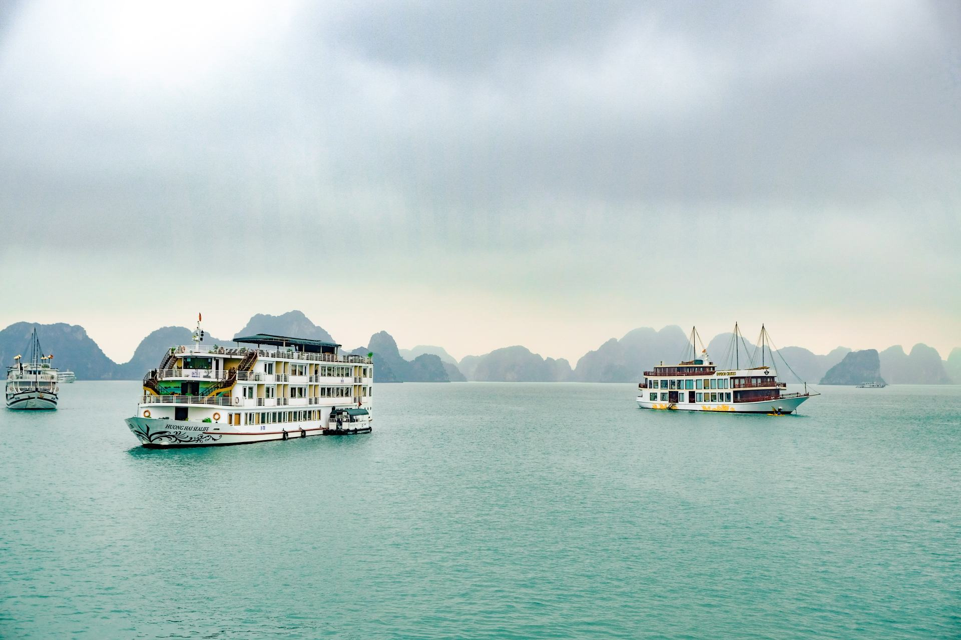 paloma cruises on ha long bay