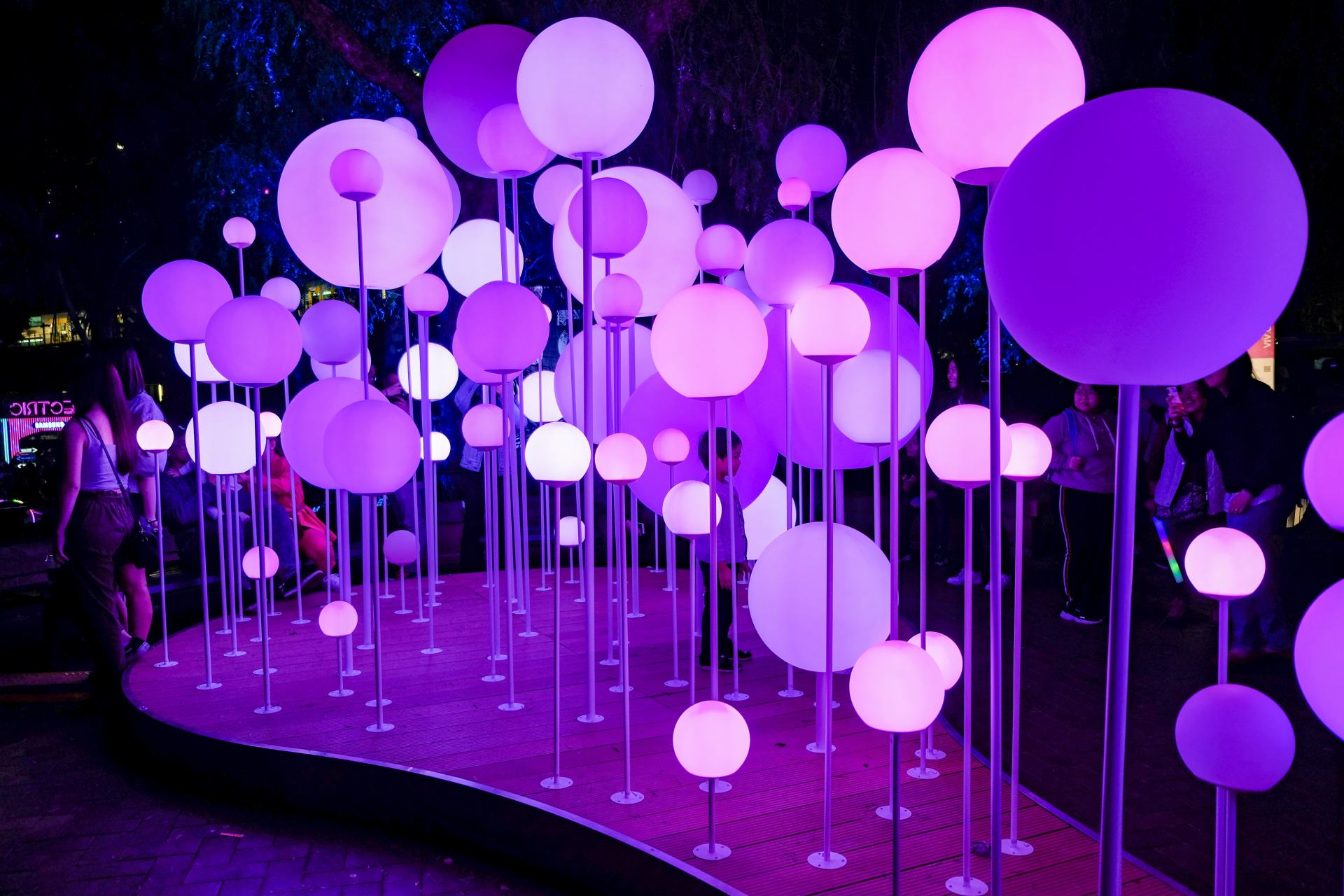 light installation vivid sydney