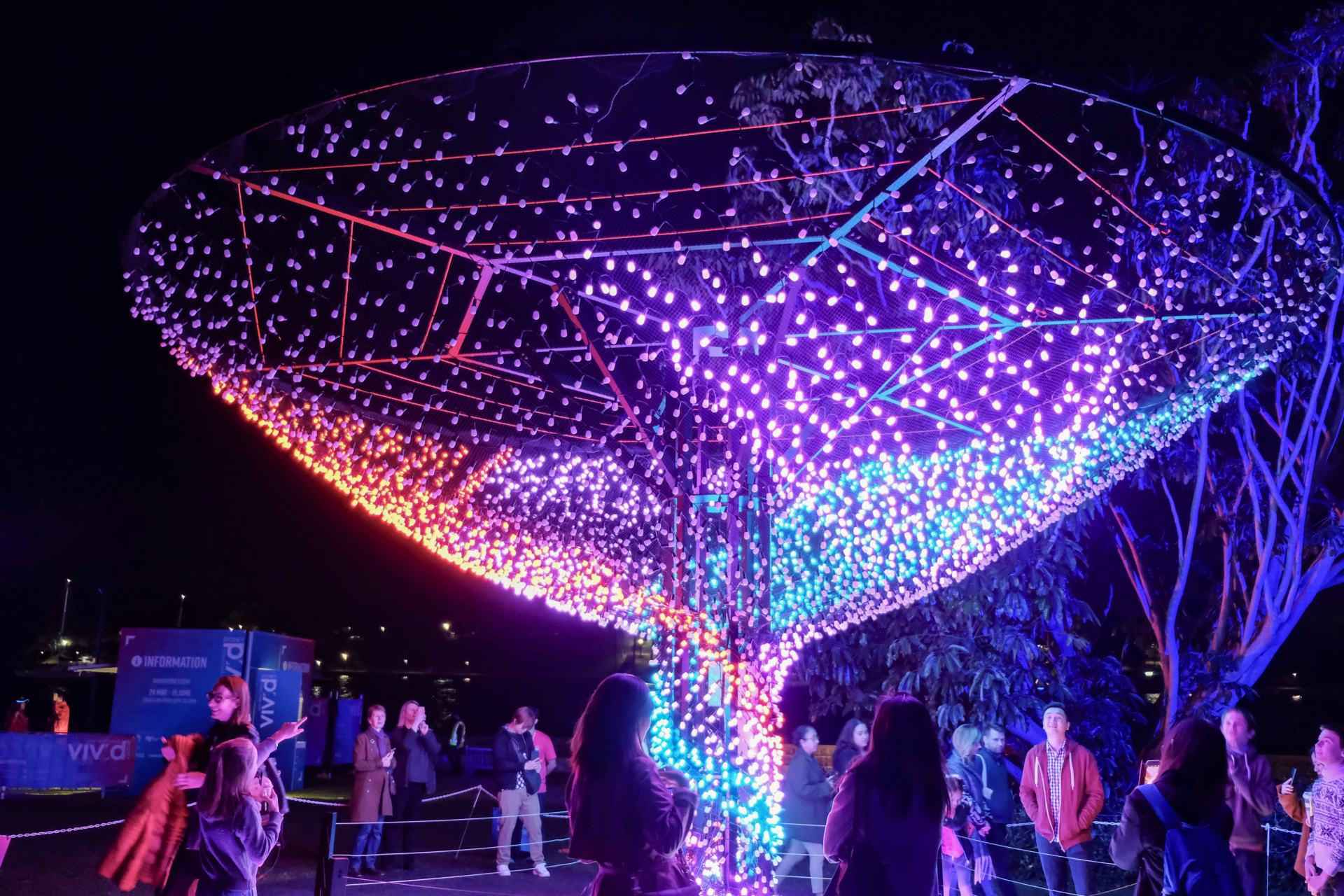 light tree vivid sydney