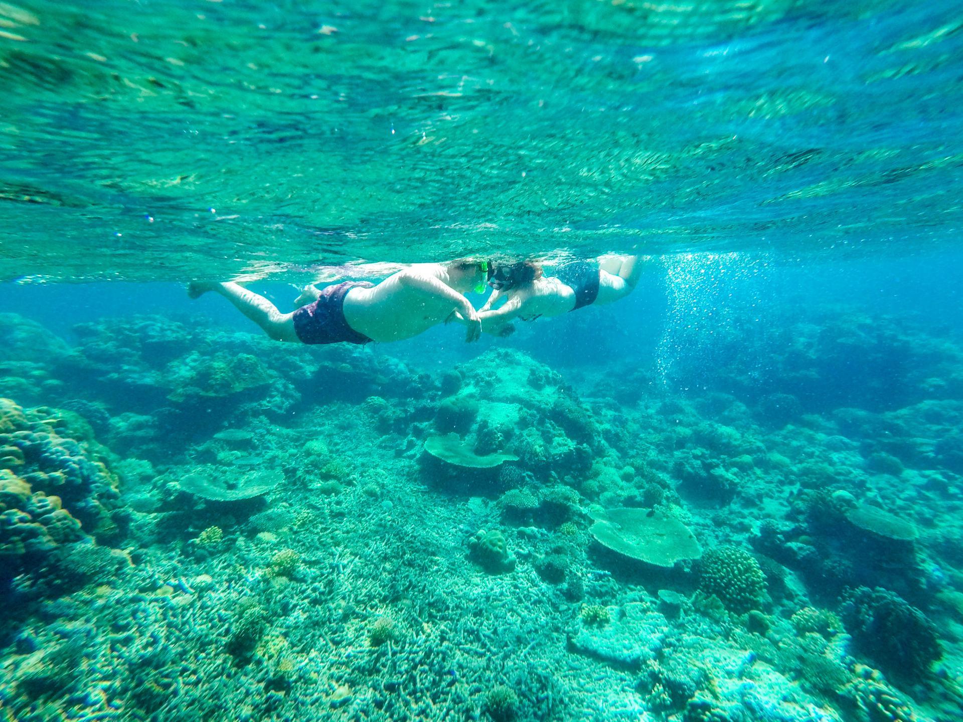 snorkelling in el nido