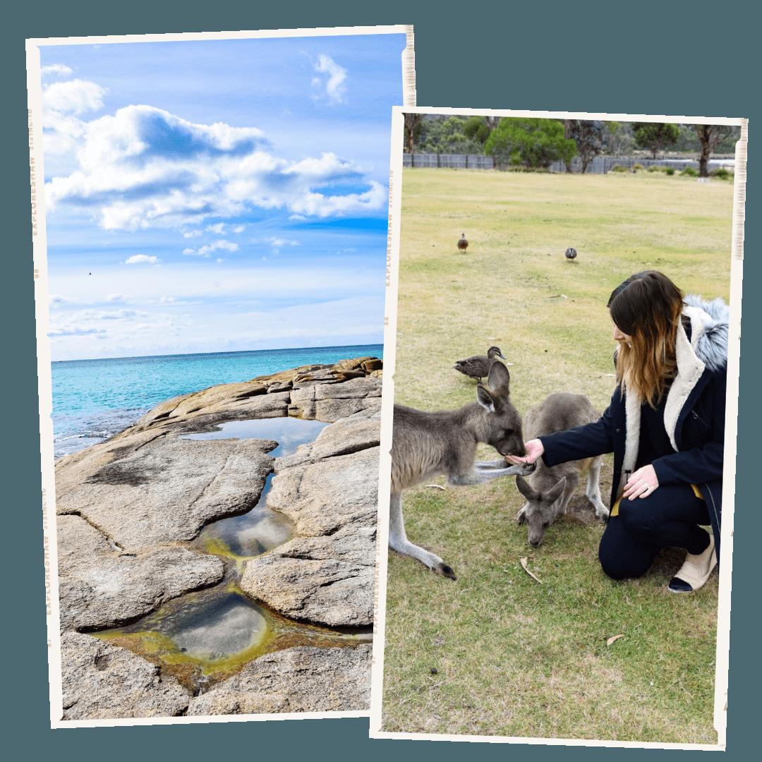 tasmania polaroids