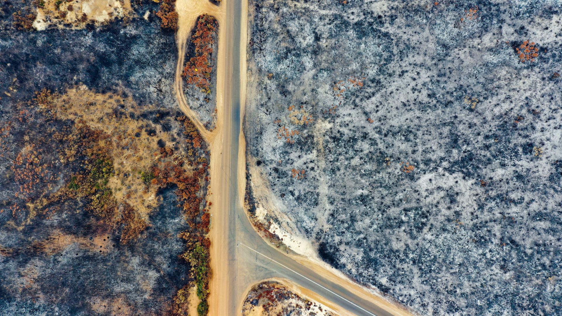 bushfire damaged kangaroo island