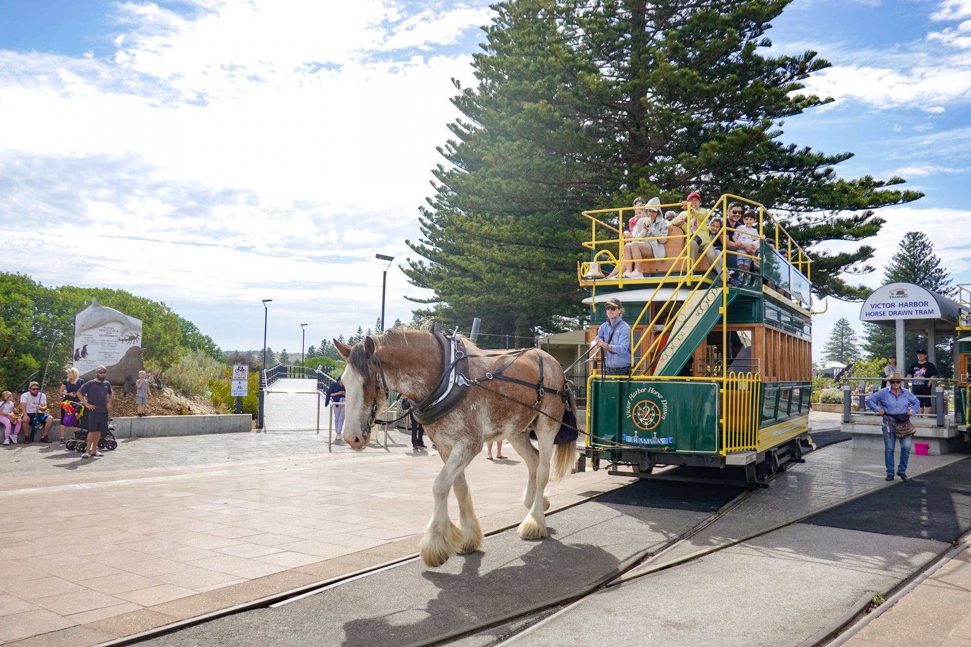 victor harbour horse and cart