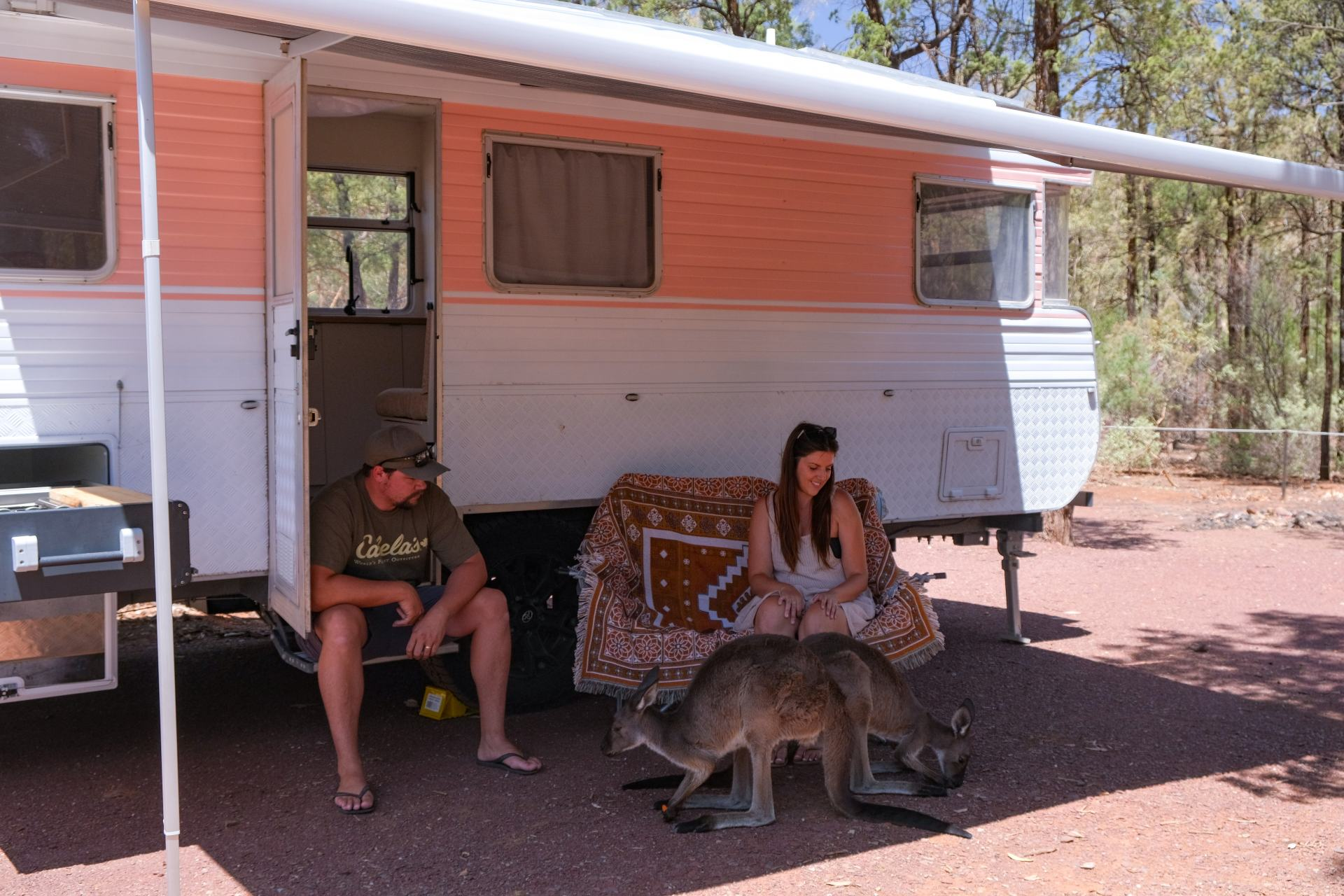camping in wilpena pound
