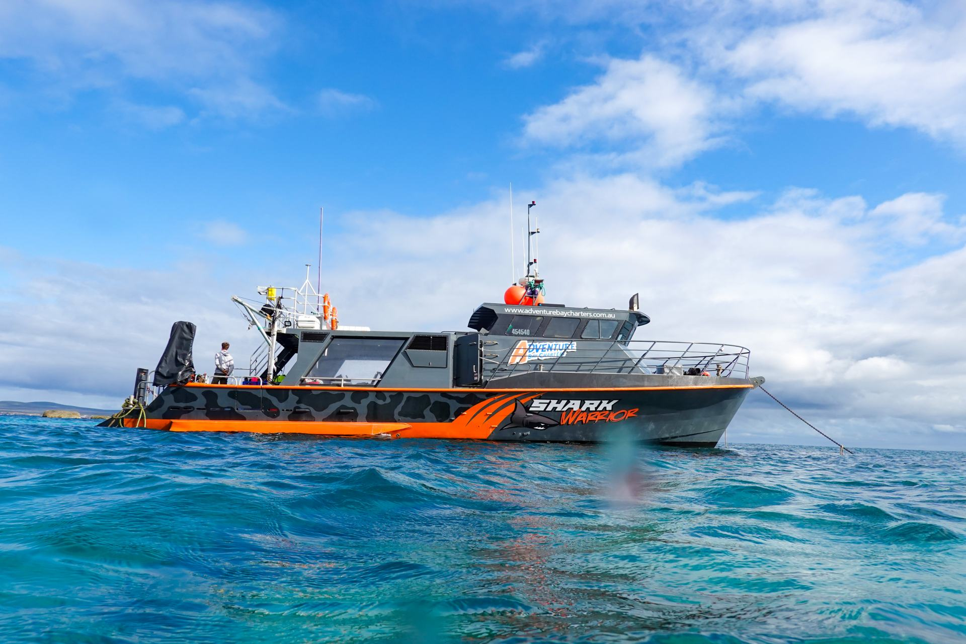 shark warrior boat