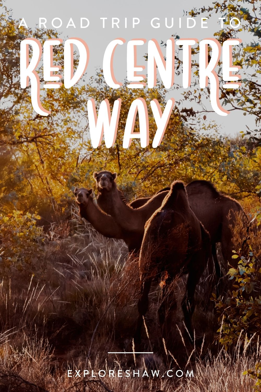 the ultimate guide to the red centre way
