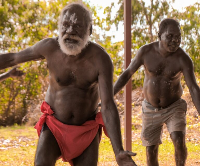 tiwi by design day tour