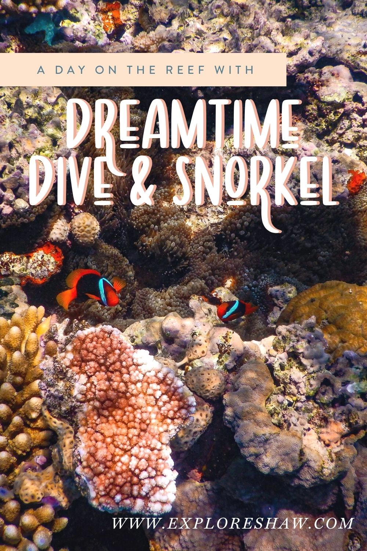 dreamtime dive & snorkel