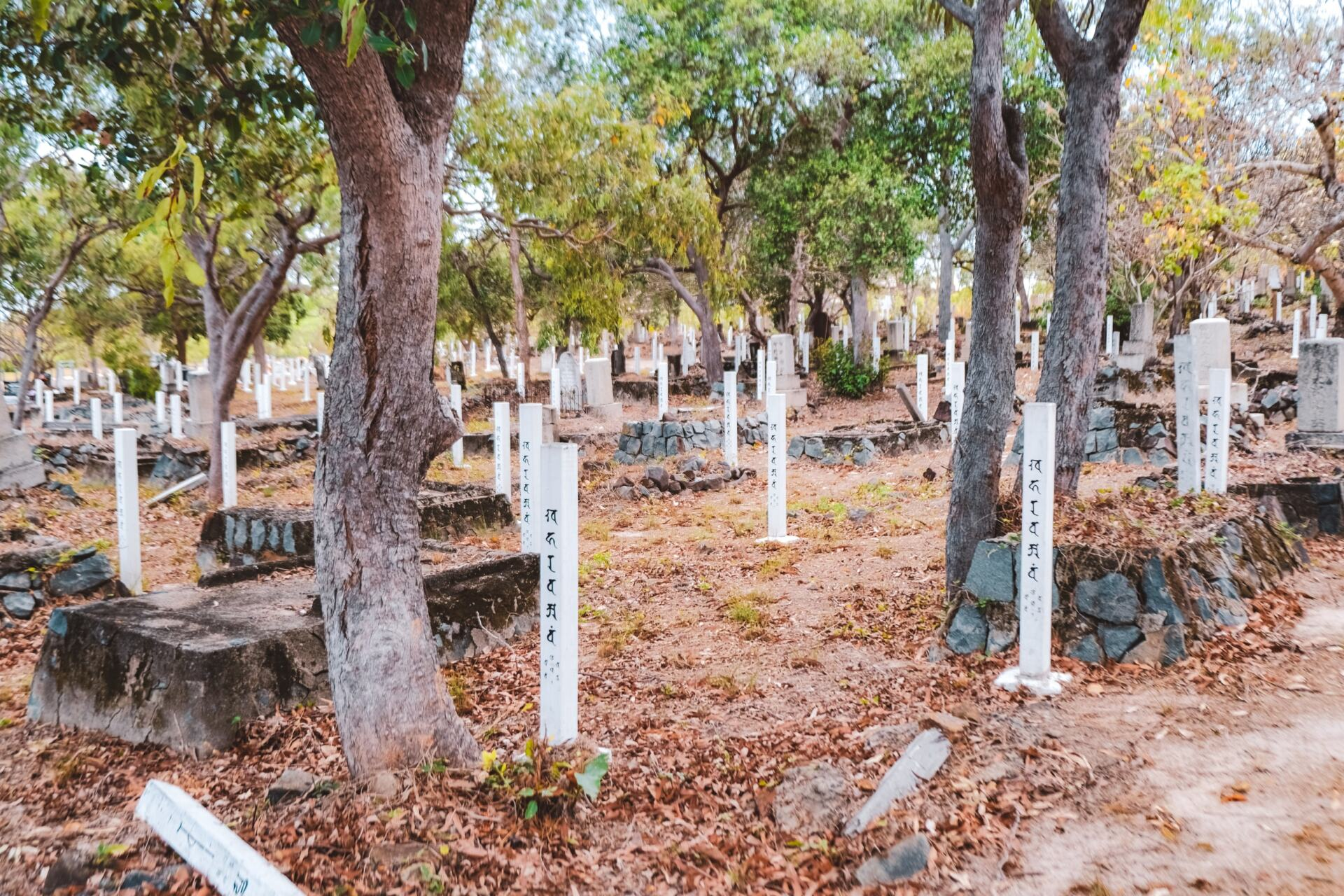 thursday island cemetry